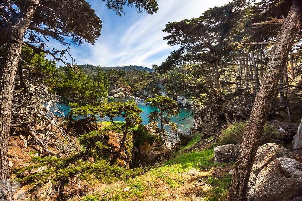 Point Lobos State Reserve, blur cove, cypress grove, near Carmel, California, Highway 1,