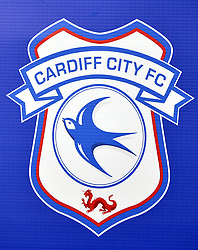 Close up of the Cardiff City crest before the game during the Premier League match at the Cardiff City Stadium.