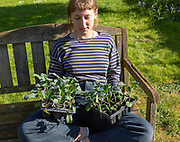 Young women sitting on bench holding seed trays of cabbage plants, UK - model released