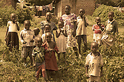 Toned photo of a group of young African children on the side of the road waiting for a treat, Kenya, Africa
