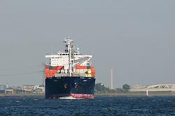 Torge S, EM ANDROS 9259379, Hoek van Holland, Rotterdam, Netherlands