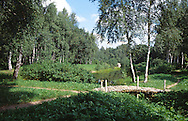 Landscape of Moscow Country