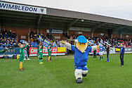 Haydon the Womble running onto the pitch whilst children are waving flags during the EFL Sky Bet League 1 match between AFC Wimbledon and Accrington Stanley at the Cherry Red Records Stadium, Kingston, England on 6 April 2019.