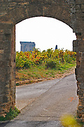 A view of the ruined chateau, the Pope's summer palace through a gate, over the vineyards. Chateauneuf-du-Pape Châteauneuf, Vaucluse, Provence, France, Europe Chateauneuf-du-Pape Châteauneuf, Vaucluse, Provence, France, Europe