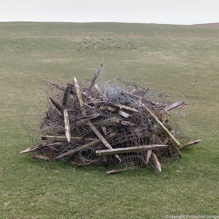 Tumbleweed, Blarbluie, Ayrshire, Scotland.