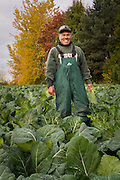 Rosalio Vera gathers collards at Spring Hill Farm in Albany, Oregon.