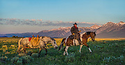 A wrangler and horses cross sage flats as first shafts of light hit the valley floor in Jackson Hole, WY.