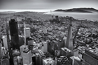 Financial District & Golden Gate Bridge II (monochrome)
