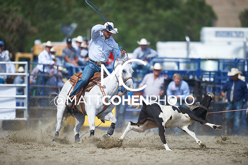 Team roper York Gill of Stephenville, TX competes at the Rancho Mission Viejo Rodeo in San Juan Capistrano, CA.  <br /> <br /> <br /> UNEDITED LOW-RES PREVIEW<br /> <br /> <br /> File shown may be an unedited low resolution version used as a proof only. All prints are 100% guaranteed for quality. Sizes 8x10+ come with a version for personal social media. I am currently not selling downloads for commercial/brand use.