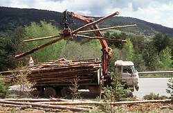 Loading logs onto lorry in the Pyrenees,