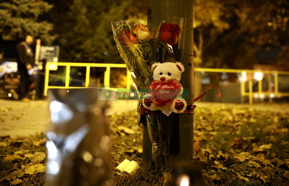 November 1, 2018 - Chicago, IL, USA - A memorial honoring Maria Coronel stands on the edge of Blackhawk Park on Thursday, Nov. 1, 2018, following the shooting death of the 21-year-old during a robbery on Wednesday night in Chicago. (Credit Image: © Chris Sweda/Chicago Tribune/TNS via ZUMA Wire)