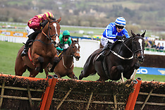 2017 Cheltenham Festival - Gold Cup Day - 17 March 2017