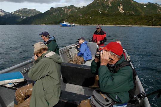 Alaskan Brown Bear (Ursus middendorffi) Photographers observing bears fishing for salmon. Katmai National Park. Alaska.