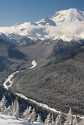 North America, United States, Washington,  Winter views of snow-covered trees, White River and Mount Rainier, viewed from Crystal Mountain Ski Resort.