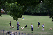 During the UK's government's Coronavirus continuing lockdown restrictions, when a total of 36,393 UK citizens are now reported to have lost their lives, dog walkers practice social distancing rules by standing metres apart while their pet dogs socialise in Ruskin Park, a public green space in the south London borough of Lambeth, on 22 May 2020, in London, England.