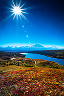 Sun blazing Mt. Denali and Wonder Lake with fall color tundra hill. Aerial View. Denali National Park & Preserve, Interior Alaska, Autumn. Vertical image.