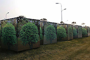 QINGDAO, CHINA - JANUARY 10:<br /> <br />  Trees are wrapped up in plastic boxes printed with holly patterns as plants are likely to suffer winter injury on January 10, 2017 in Qingdao, Shandong Province of China. To prevent landscape trees frozen to death, the local botanical garden department makes specially designed green boxes for them in Qingdao.<br /> ©Exclusivepix Media