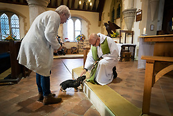 © Licensed to London News Pictures. 06/10/2019. Selsey, UK. Father Andy Wilkes takes the annual Service of Blessing of Animals at St Peter's Church in Selsey, West Sussex.  The service is to celebrate the feast day of St Francis of Assisi. Photo credit: Peter Macdiarmid/LNP