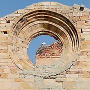 Stork ay the nest on the top of the ruins of the Santa María de Moreruela monastery.