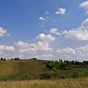Toscane. Italy.