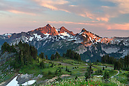 The Tatoosh Range from Mazama Ridge in Mount Rainier National Park, Washington State, USA