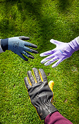 A selection of gardening gloves