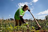 Kenya, June 2009. Village life near the Friends Kaimosi Hospital. Kennedy Lusuli Ligondo works in his squash field.