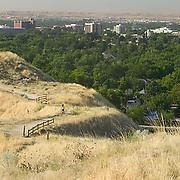 Idaho, Ada County, Boise, Hulls Gulch, Camelsback Park, skyline, trail, female, jogger