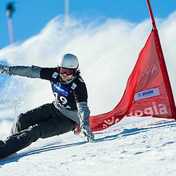 20170128: SLO, Snowboarding - FIS Snowboard World Cup Rogla 2017