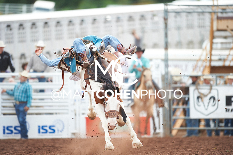 Bareback rider Matt Crumpler of Winnie, TX rides Painted Fudge at the Pikes Peak or Bust Rodeo in Colorado Springs, CO.<br /> <br /> <br /> UNEDITED LOW-RES PREVIEW<br /> <br /> <br /> File shown may be an unedited low resolution version used as a proof only. All prints are 100% guaranteed for quality. Sizes 8x10+ come with a version for personal social media. I am currently not selling downloads for commercial/brand use.