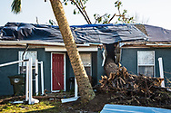 A tree cutting a home in half in the middle of widescale destruction in Lynn Havenm Florida following Hurricane Michael.