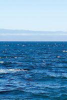 Looking across the Straight of Juan De Fuca. Olympic Peninsula, WA