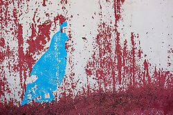 Abstract of paint and rust on water tank, Ladder Ranch, west of Truth or Consequences, New Mexico, USA.