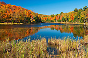 Fall colors at Potash Lake<br />Nera Bancroft<br />Ontario<br />Canada