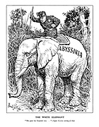 """The White Elephant. """"She goes her Imperial way ..."""" - Signor Gayda writing of Italy. (Mussoilni foces a stubborn Abyssinian elephant to go his way with the brute force of his stick)"""