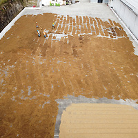 Aerial shot of the COMSA coop in Marcala, La Paz, Honduras, showing coffee being spread on a drying patio.