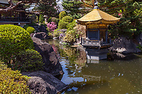 Jorenji Temple is a Jodo sect temple in Akatsuka ,Itabashi, Tokyo known for its  Tokyo Big Buddha usually referred to as Akatsuka Daibutsu or Tokyo Big Buddha.  In addition to the Big Buddha at Joren-ji, there is also a very large rakan Buddha's disciple statue and an adacent Japanese pond garden with a unique pavilion in it.  Although Joren-ji is best known for its large bronze Buddha, its grounds and pond garden are well worth a visit.