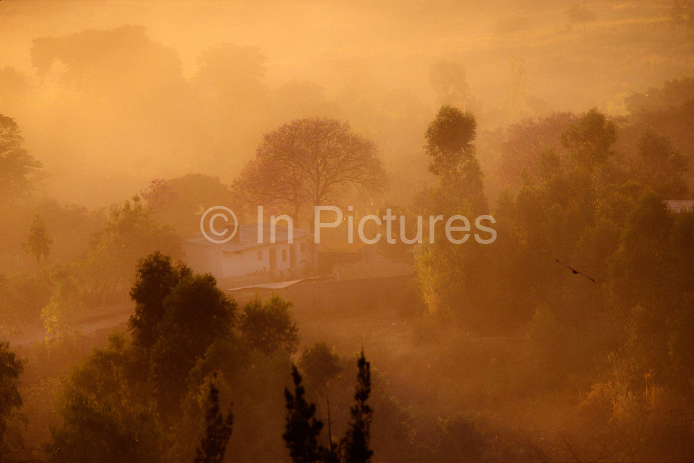 The dawn landscape around the ancient city of Harar,  Ethiopia
