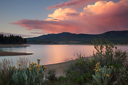 """""""Sunset at Boca Reservoir 4"""" - This colorful cloud and mule ear flowers were photographed during sunset at Boca Reservoir near Truckee, California."""