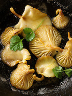 Yellow Oyster mushrooms sauteed in butter in a frying pan