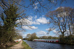 Harefield, UK. 6th April, 2021. Ground clearance and tree felling works for the HS2 high-speed rail link are pictured alongside the Grand Union Canal. Thousands of trees have already been felled in the Colne Valley where HS2 works will include the construction of a Colne Valley Viaduct across lakes and waterways and electricity pylon relocation.