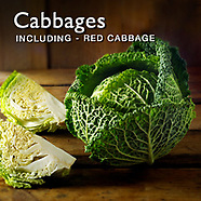 Cabbages   Food Pictures, Photos, Images & Fotos