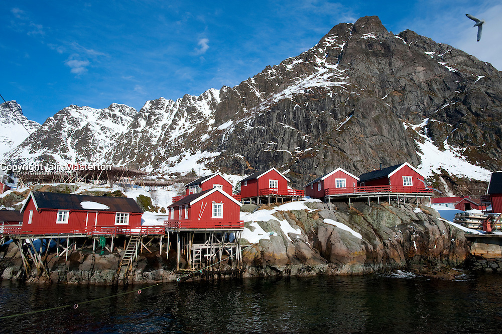 Traditional red wooden Rorbu fishermen`s huts in village of Å on Moskenesoya Island in Lofoten Islands in Norway