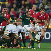 Fourie Du Preez, South Africa, in action during the Wales V South Africa, Pool D match during the Rugby World Cup in Wellington, New Zealand,. 11th September 2011. Photo Tim Clayton