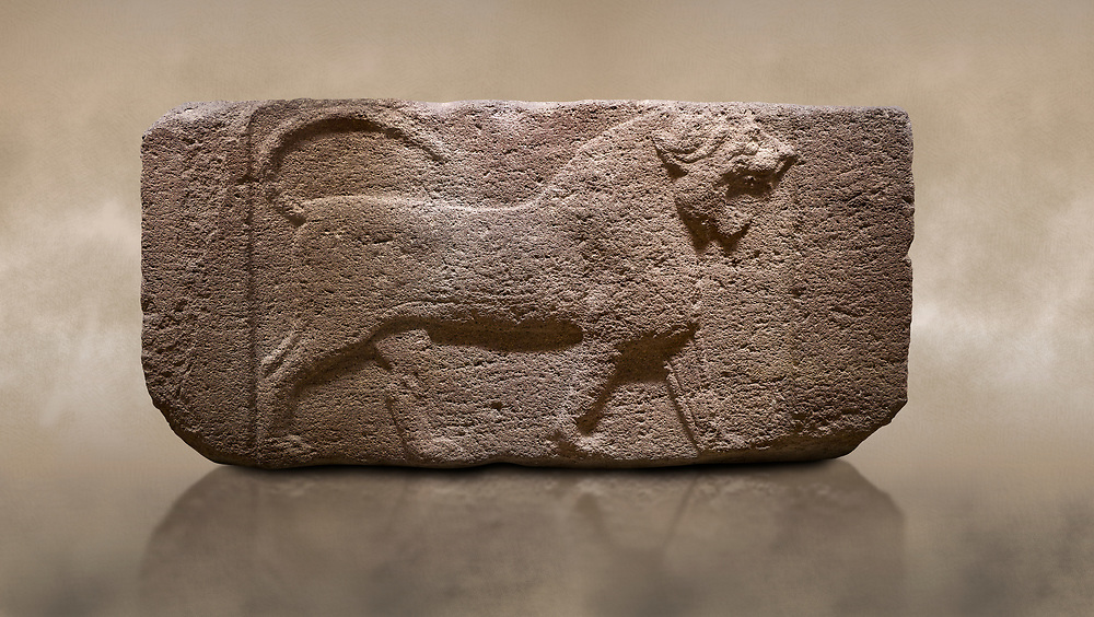 Photo of Phygian relief sculpted orthostat stone panel. Andesite, Etimesgut, Ankara. Phrygian. 1200-700 BC. Anatolian Civilisations Museum, Ankara, Turkey.<br /> <br /> Figure of a roaring lion. The cross mark on the chest draws attention. The muscles in his legs are schematic. There are frame edges in front and behind the lion. <br /> <br /> Against a brown art background. .<br /> <br /> If you prefer you can also buy from our ALAMY PHOTO LIBRARY  Collection visit : https://www.alamy.com/portfolio/paul-williams-funkystock/phrygian-antiquities.html  - Type into the LOWER SEARCH WITHIN GALLERY box to refine search by adding background colour, place, museum etc<br /> <br /> Visit our CLASSICAL WORLD PHOTO COLLECTIONS for more photos to download or buy as wall art prints https://funkystock.photoshelter.com/gallery-collection/Classical-Era-Historic-Sites-Archaeological-Sites-Pictures-Images/C0000g4bSGiDL9rw