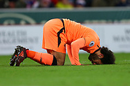 Mohamed Salah of Liverpool kisses the ground as he celebrates after scoring his teams 3rd goal. Premier league match, Stoke City v Liverpool at the Bet365 Stadium in Stoke on Trent, Staffs on Wednesday 29th November 2017.<br /> pic by Chris Stading, Andrew Orchard sports photography.
