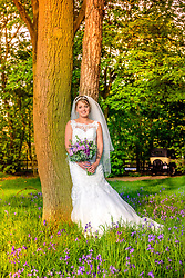 Gorgeous Wedding photo of Bride in amongst the Bluebell Woods at Knebworth Barns.