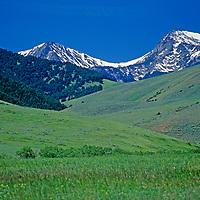 Pastures spread below Hollow Top Mountain and Potosi Peak.
