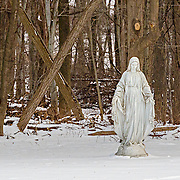 A statue at the Loyola Jesuit Center in Morristown, NJ.  This statue is cutting at the end of a field that is bordered by some woods.  I was shooting in the early morning, just after the blue light.  I was struck by large cross (X) behind her.