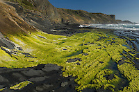 Carriagem Beach, Southwest Alentejo and Vicentine Coast Natural Park, Portugal